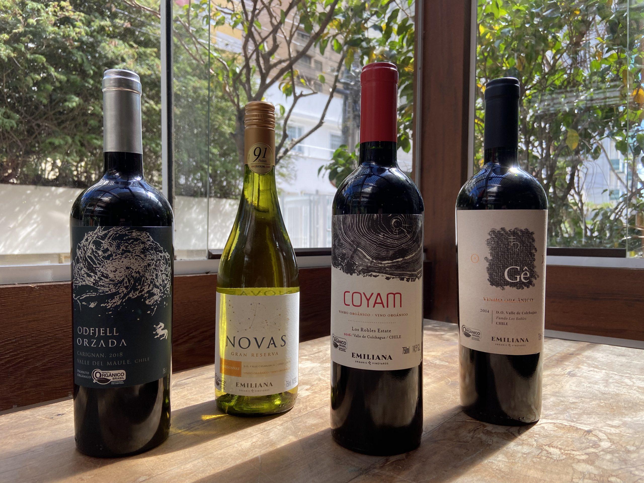 Seleção especial de vinhos orgânicos